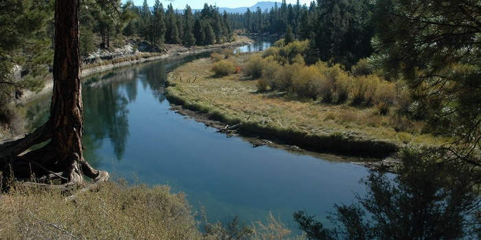 Read more about the article LaPine State Park to Big Deschutes River Trip